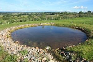 1401193_artificial_pond.jpg