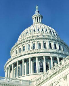 918333_u_s__capitol_building.jpg