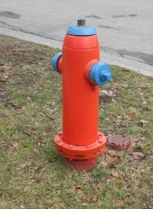 942718_fire_hydrant.jpg