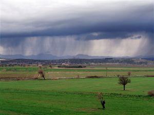 961601_rain.jpg